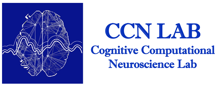 Cognitive Computational Neuroscience (CCN) Lab | Bilkent University
